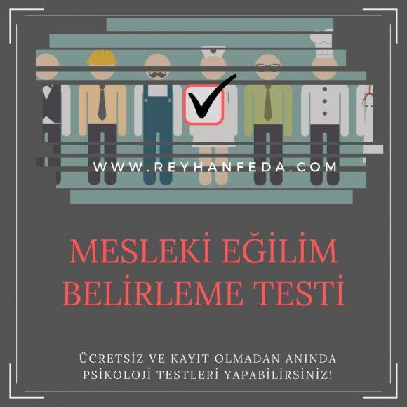 meslek testi, bireylerin mesleki seçimlerine destek sağlar.